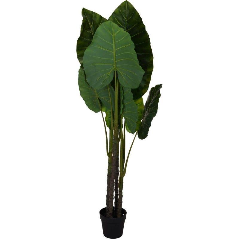 PLANTA ARTIFICIAL DUMISA 155CM
