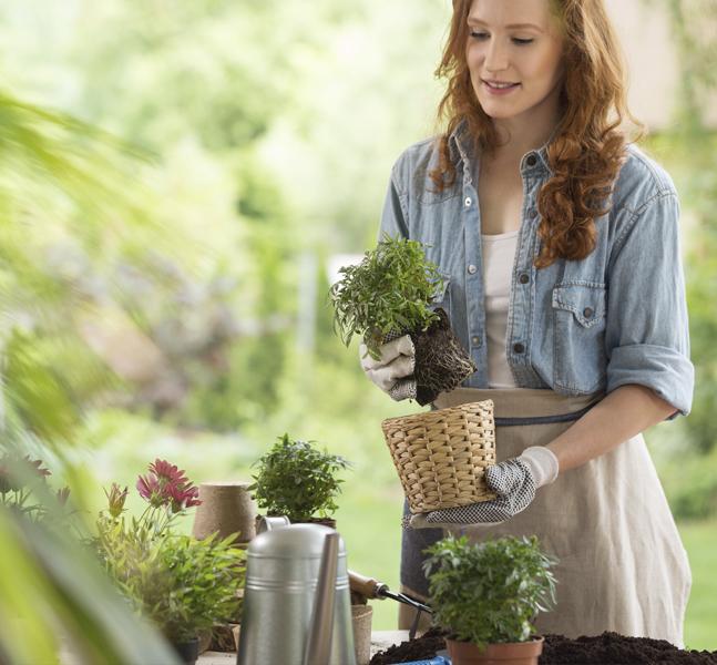 decora tu terraza con plantas artificiales o naturales que aporten color y frescura