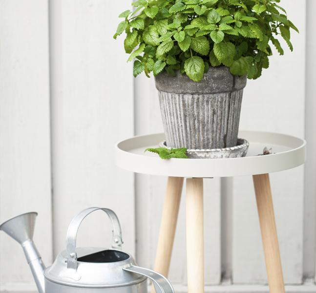 dale un aire fresco a tu terraza con nuestras plantas artificiales