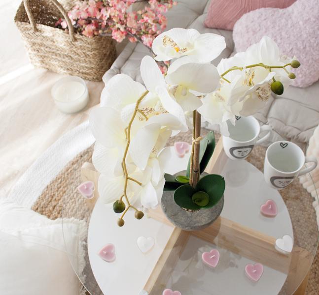 Maceta orquídea, un adorno de San Valentín único