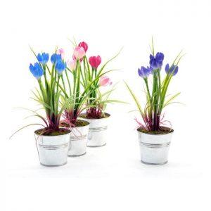 flores-altas-surt-4-col-c-maceta